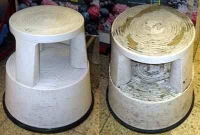 falscher elefantenfu pflanzenbestimmung. Black Bedroom Furniture Sets. Home Design Ideas